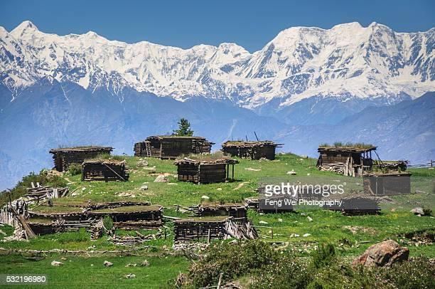 village houses at fairy meadows, gilgit-baltistan, pakistan - gilgit baltistan stock photos and pictures