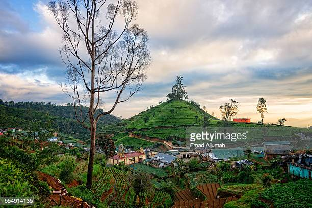 Village in Nuwara Eliya, Sir Lanka