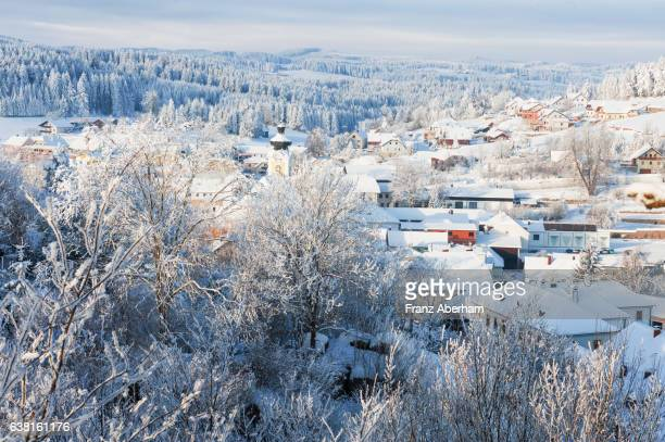 Village in the grip of frost and cold, Waldviertel, Austria