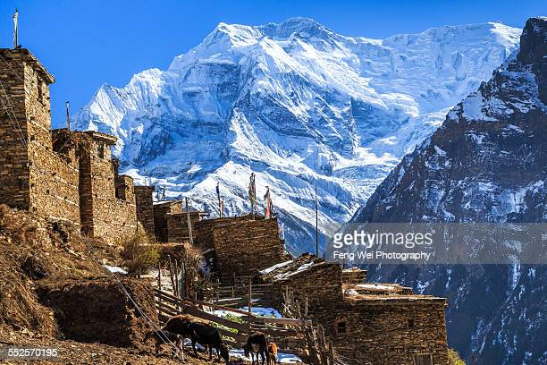 Village In the Himalayas, Annapurna Circuit, Nepal