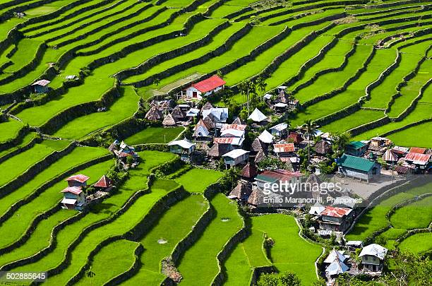 Village of Batad