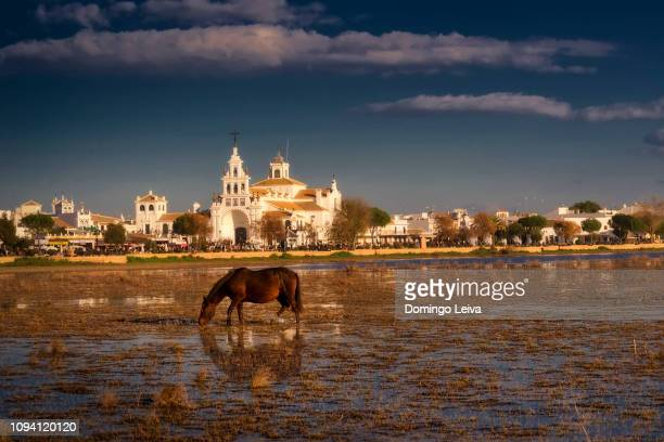 village of el rocio, huelva province, andalucia, spain - donana national park stock photos and pictures