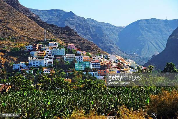Village of La Calera and a banana plantation, Fei banana -Musa troglodytarum-, Valle de Gran Rey Valley, La Gomera, Canary Islands, Spain, Europe