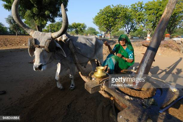 Village of shepherds and farmers near Ranakpur in Rajasthan on February 24 2017 in India