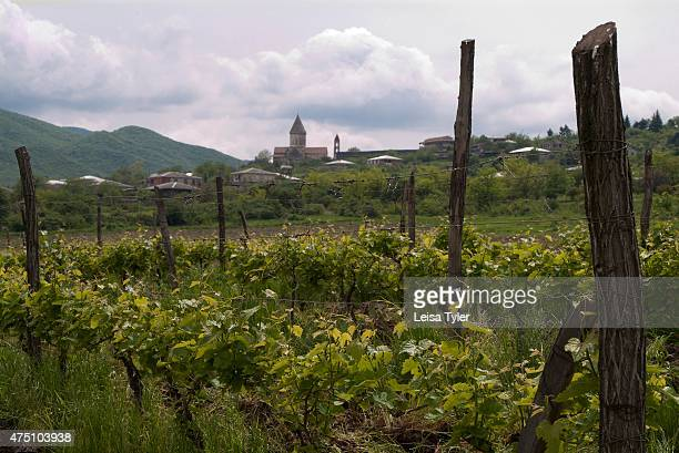 A village overlooking the vineyards in the Kakheti Valley near Sighnaghi in georgia Historians say that wine has been made in the Kakheti Valley a...