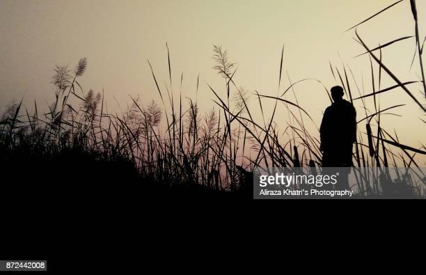 village silhouette - カラチ ストックフォトと画像