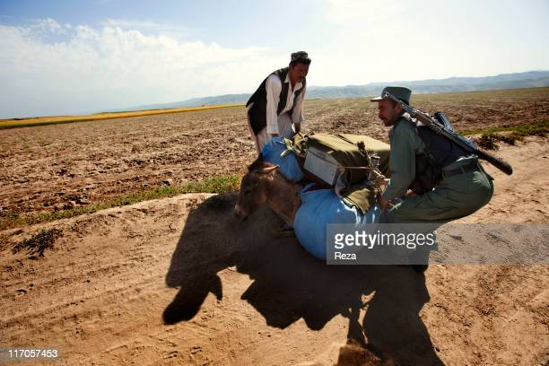 A villager and an Afghan armed guard helping a too loaded donkey to stand on its legs May 18 2009 in Takhar Province Afghanistan