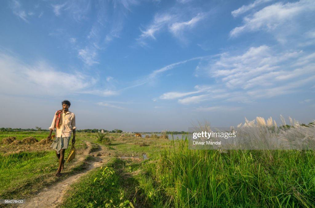 A villager returns from field : Stock Photo