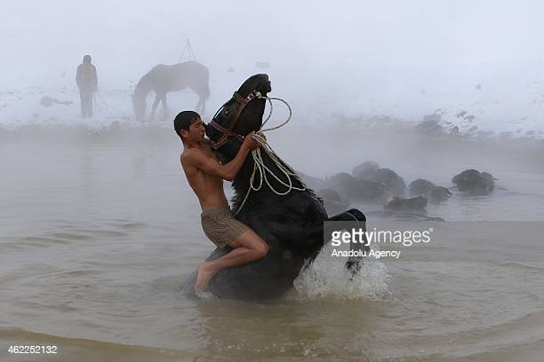 A villager rides his horse in a thermal spring at temperatures around 40 degrees centigrade in the village of Budakl in Güroymak district Bitlis...