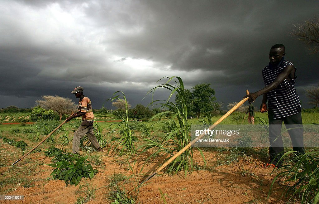 Niger Suffers Famine : News Photo