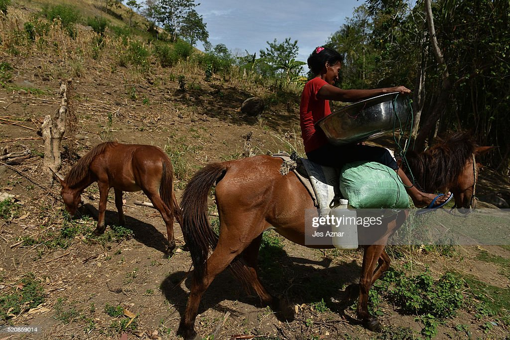 COTABATO, MINDANAO, PHILIPPINES - APRIL 10: A villager travels with her horse to collect water and wash clothes in a stream 2 kilometers from her village in Kabacan on April 10, 2016 in Cotabato, Mindanao, Philippines. The heatwave brought on by the El Nino weather phenomenon has severely affected food and water supplies in many countries. Based on reports, 85 percent of the whole Philippines will experience the effects of the drought and around 12 million Filipinos who rely on agriculture will directly be affected. In southern Philippines, where farmers lacked agricultural infrastructures and farming subsidies, the population faced impending hunger during the drought and two demonstrators were left dead and dozens of people injured after police dispersed thousands of drought-hit farmers in early April.