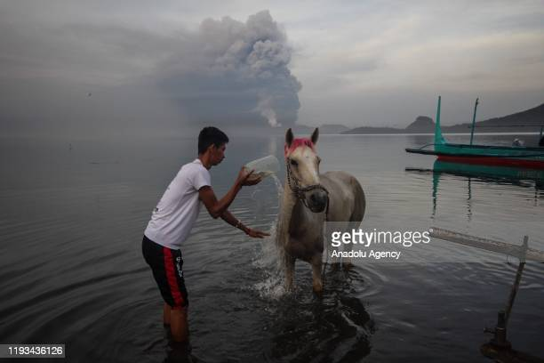 A villager washes his horse while the Taal volcano erupts in Batangas Philippines on January 13 2020
