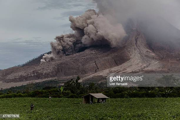 A villager works in their fields as Mount Sinabung spews pyroclastic smoke seen from Tiga Kicat village on June 20 2015 in Karo District North...