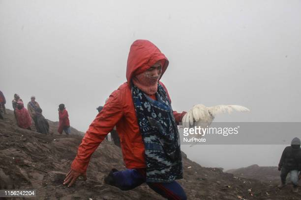 Villagers carry a chicken that thrown tenggerese people to the crater of Mount Bromo during the ceremony of Yadnya Kasada Festival at Probolinggo,...