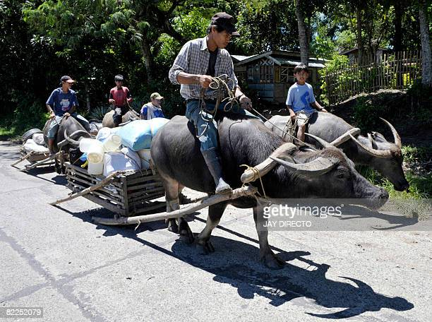 Villagers evacuate in a caravan using water buffaloes to carry their meager belongings as Army reinforcements arrive in the southern Philippine town...