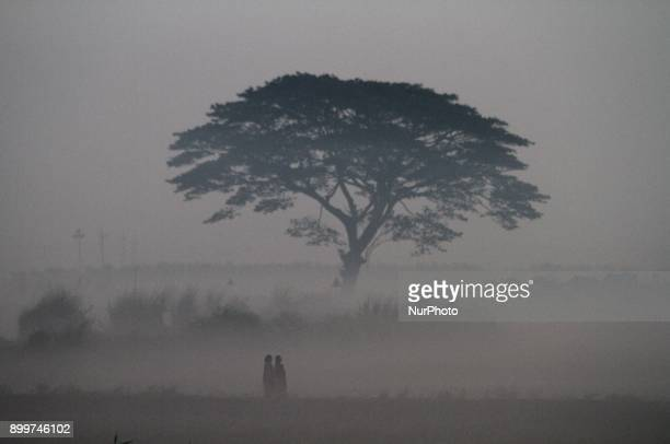 Villagers look at their agricultural paddy field and village road as fog envelops in today's cold morning outskirts of the eastern Indian state...