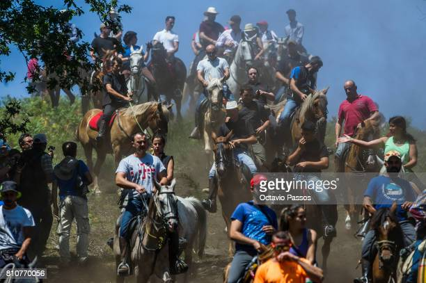 Villagers round up wild horses on the hills of Sabucedo during the 'Rapa Das Bestas' a traditional event in the Spanish northwestern village of...