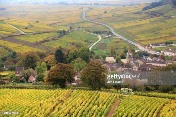 Villages and Vineyards of Burgundy