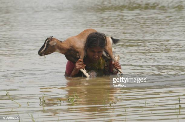 A Villages Women care Goat and go to save place Flood at Hooghly District Kolkata city to 70 Kilometer distances on July 282017 in KolkataIndia