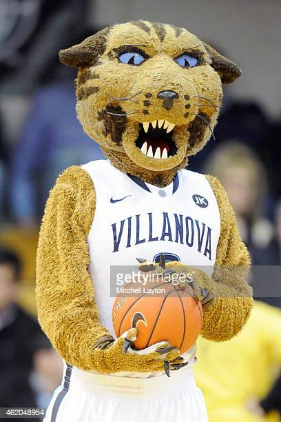 Villanova Wildcats mascot on the floor during a college basketball game against the Xavier Musketeers at The Pavilion on January 19 2015 in Villanova...