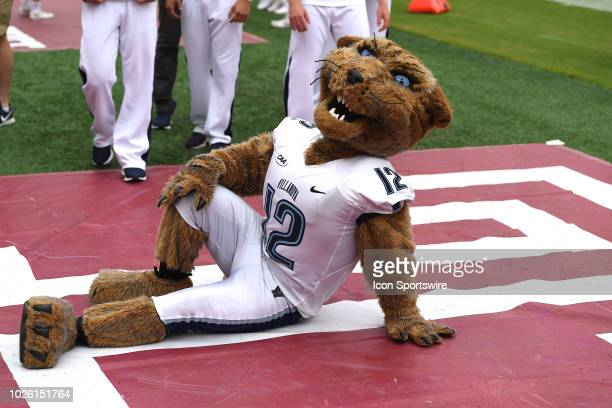 Villanova Wildcats mascot sits on the field during a college football game between the Villanova Wildcats and the Temple Owls on September 1 2018 at...