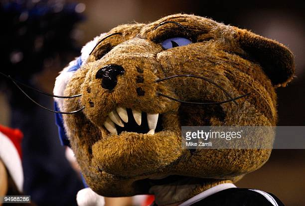 Villanova Wildcats mascot Will D Cat watches the play on the field during the NCAA FCS Championship game against the Montana Grizzlies at Finley...