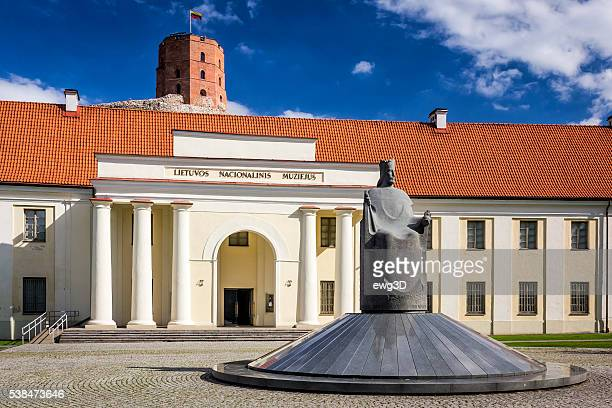 vilnius, lithuania - lithuania stock pictures, royalty-free photos & images