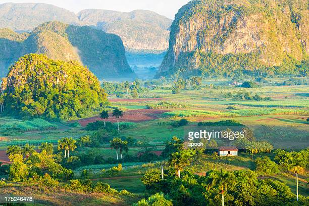 vinales valley, cuba - cuba stock pictures, royalty-free photos & images