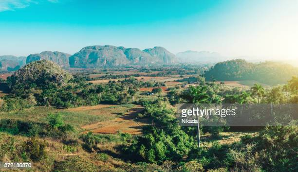 valle de vinales, cuba - country geographic area stock pictures, royalty-free photos & images