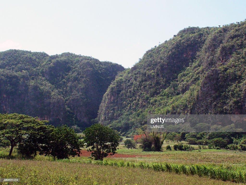 Valle di Viñales vista sulle montagne : Foto stock