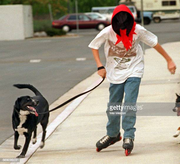 Vince Tomasi sporting a Grim Reaper mask takes Coty a siberian husky/springer spaniel mix for a stroll while roller blading at Conejo Creek Park in...