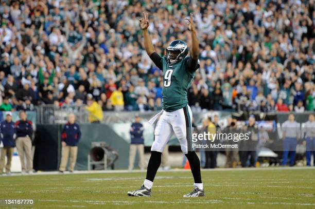 Vince Young of the Philadelphia Eagles celebrates after lesean Mccoy scored a 2-yard rushing touchdown in the first quarter against the New England...