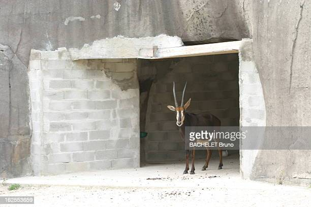 Threat Of Closure Les structures en béton armé du célèbre ZOO dégradées par le temps et le manque d'entretien se sont fissurées et des trous sont...