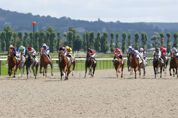 FRA: Meeting of Deauville - Quinte +