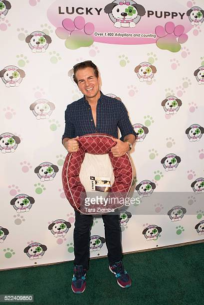 Vincent De Paul attends Dirty Dawgs Night of Comedy Fundraising Green Carpet Event at Lucky Puppy Retail And Rescue on April 18 2016 in Studio City...