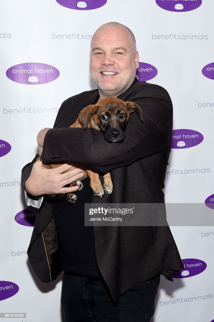 Vincent D'Onofrio attends the Animal Haven Gala 2018 at Tribeca 360 on May 22, 2018 in New York City.
