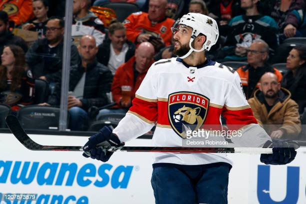 Vincent Trocheck of the Florida Panthers skates during the game against the Anaheim Ducks at Honda Center on February 19 2020 in Anaheim California