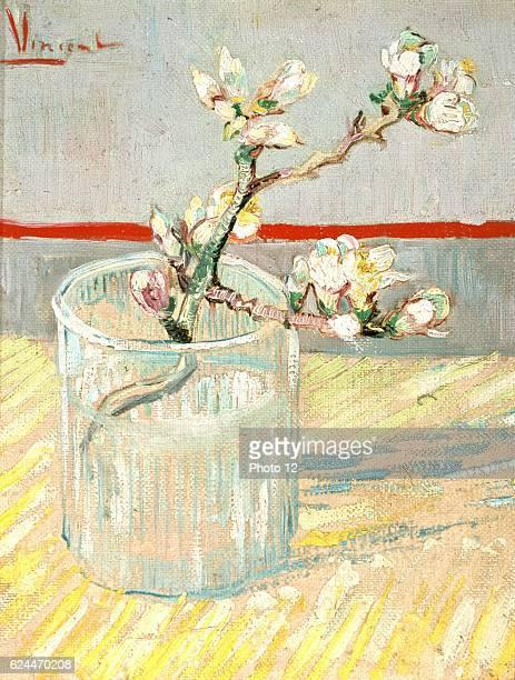Vincent Van Gogh Dutch school Sprig of Flowering Almond in a Glass March 1888 Oil on canvas Amsterdam Van Gogh Museum