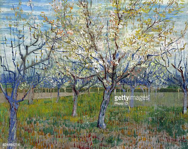 Vincent van Gogh Dutch school The Pink Orchard 1888 Oil on canvas Amsterdam Van Gogh Museum