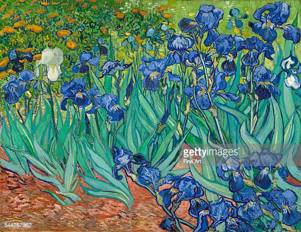 Vincent van Gogh Irises oil on canvas 711 x 93 cm The J Paul Getty Museum Malibu California