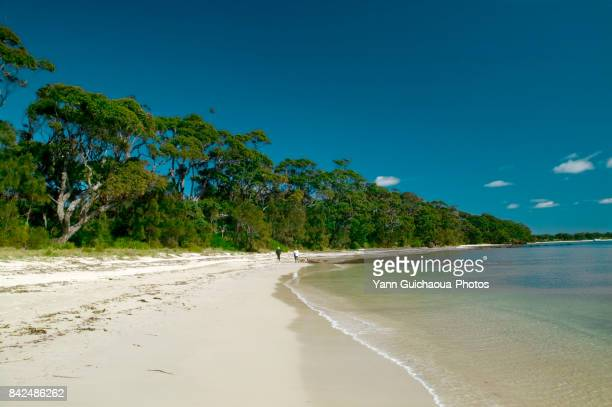 Vincentia beach, Jervis bay, New South Wales, Australia