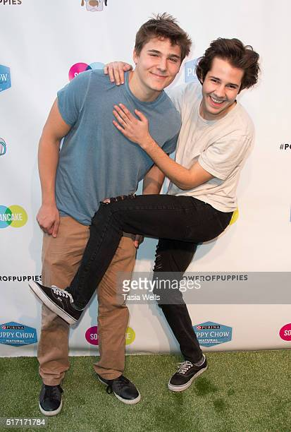 Vine and YouTube stars Alex Ernst and David Dobrik attend SoulPancake's Puppypalooza Party at SoulPancakes Headquarters on March 23 2016 in Los...