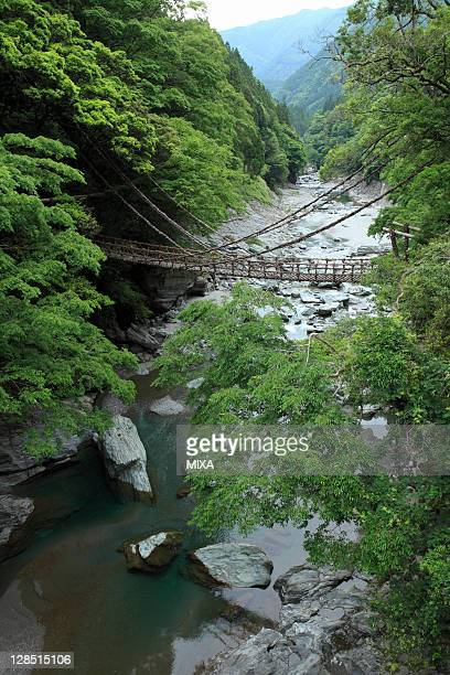 vine bridge and iya valley, miyoshi, tokushima, japan - vale de iya - fotografias e filmes do acervo