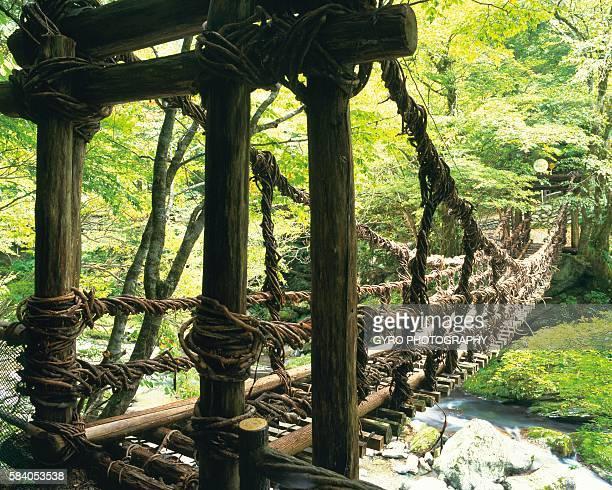 A Vine Bridge in Iya Valley, Miyoshi, Tokushima Prefecture, Japan