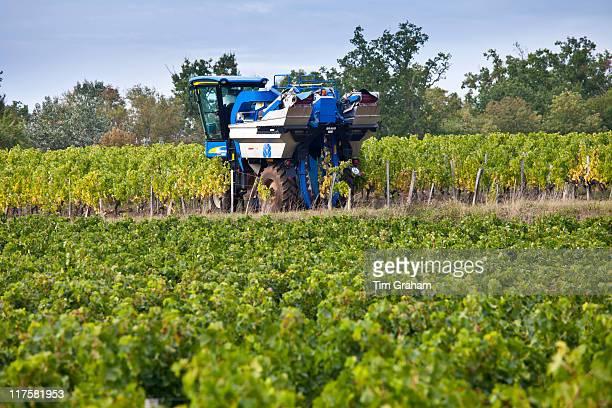 Vine tractor at work during vendange harvest in vineyard at St Emilion Bordeaux wine region of France