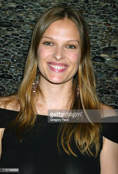 Vinessa Shaw during 3rd Annual Tribeca Film Festival Showtime Party at Nobu in New York City New York United States