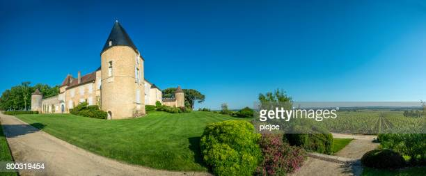 vineyard and chateau d'yquem, sauternes region, aquitaine, franc - aquitaine stock photos and pictures