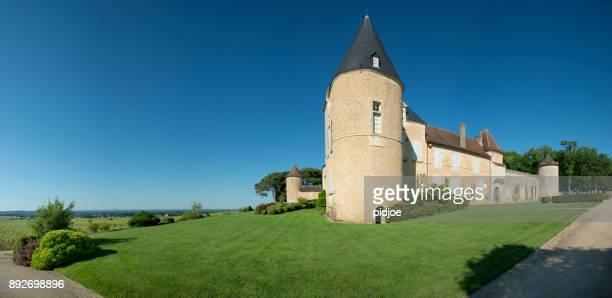Wijngaard en Château d'Yquem, Sauternes regio, Aquitaine, Franc