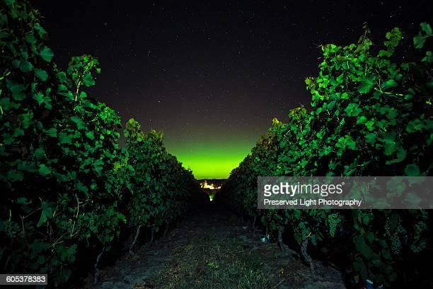 vineyard at night, naramata bench, british columbia, canada - light natural phenomenon ストックフォトと画像