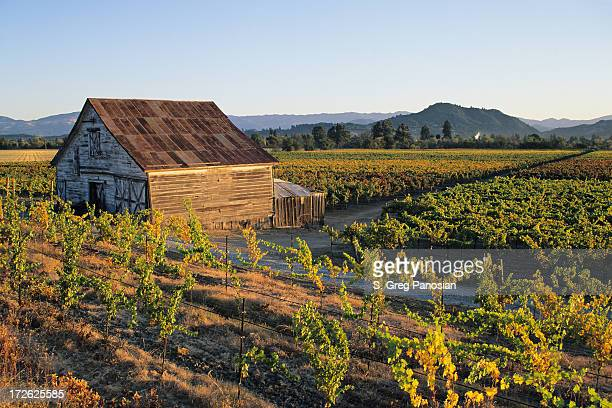 vineyard farmhouse - sonoma county stock pictures, royalty-free photos & images